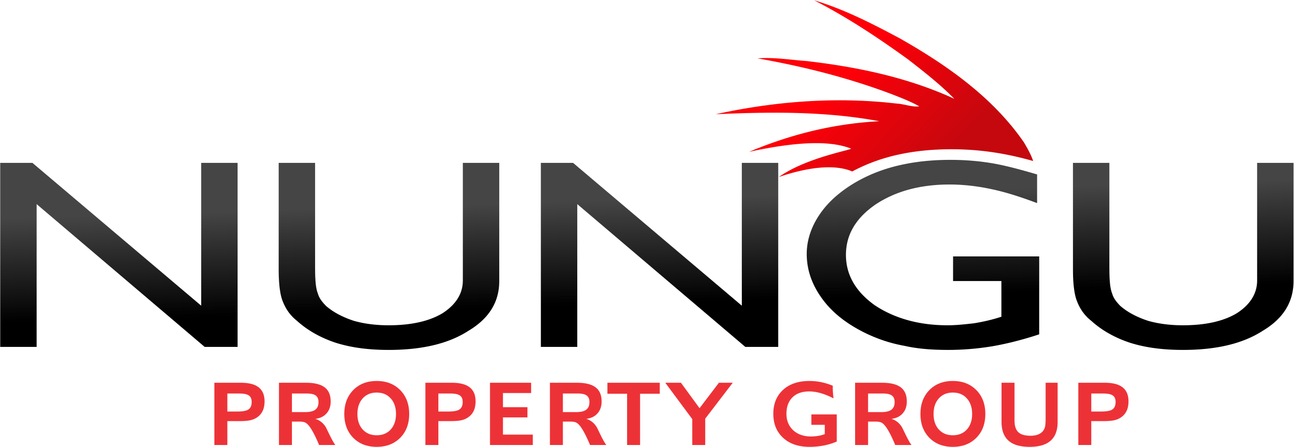 Nungu Property Group